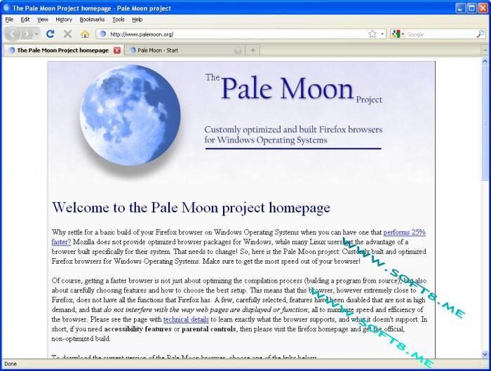 Pale Moon 28.13.0 多國語言免安裝
